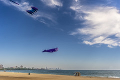 Beautiful Day to Fly Kites (Flipped Out) Tags: chicago southshore lakemichigan rainbowbeach rainbowbeachpark chicagoparkdistrict