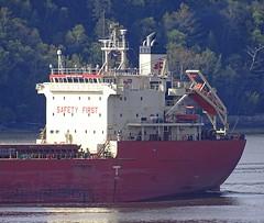 Federal Yukina - IMO 9476977 (J. Trempe 3,960 K hits - Merci-Thanks) Tags: stefoy quebec canada ship navire fleuve river stlaurent stlawrence vraquier bulker federal yukina