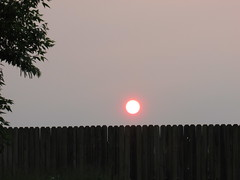 The sun setting (creed_400) Tags: belmont west michigan spring may fence sun sunset dusk clouds sky