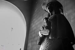 ROCIO BURRITO 19_113 (Almu_Martinez_Jiménez) Tags: rocío camino romería virgen fe devoción fervor caballos animales horse horses bienestar burro donkey mulo mula carro carreta charro ermita flamenco