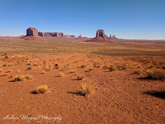 The view from Artist's Point, Monument Valley, Arizona (Andrea Meyers) Tags: 2018 organrockshale sunrise mesas theviewhotel june25 navajotriballands arizona monumentvalley cutlerformation dechellysandstone sandstone