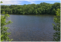 Banks Pond (Markus Alydruk) Tags: bankspond pochuckmountain sussex sussexcounty nj newjersey usa america lake pond water forest woods tranquil peaceful calm hiking hike