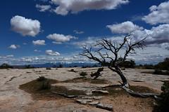 Z70_2266_s (ryokomoto) Tags: utah moab lasalmountains clouds canyonlands