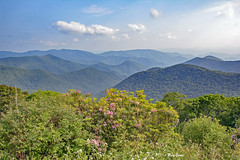 Simple Pleasures (mevans4272) Tags: nc trees laurel mountain sky clouds sunny mountains