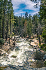 river 5 (1 of 1) (troy_williams) Tags: rivers sequoianationalpark nationalparks california trees sonya6400 milc nature wander travel forests photography water flow sky clouds blue conservation