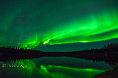 Northern Lights & Big Dipper! (incastar7) Tags: dancing green sky night reflection bigdipper stars lake aurora northernlights