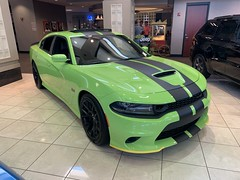 2019 Charger Scat Pack (Smalltowntx87) Tags: brand new cars automotive dealership dodge chrysler fiat scat pack 2019 2018 charger challenger ta hemi 57 64 sublime pearl hellcat redeye 707hp b5 blue srt american muscle ram 1500 longhorn trucks plum crazy purple