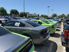 2019 Chargers (Smalltowntx87) Tags: brand new cars automotive dealership dodge chrysler fiat scat pack 2019 2018 charger challenger ta hemi 57 64 sublime pearl hellcat redeye 707hp b5 blue srt american muscle ram 1500 longhorn trucks plum crazy purple