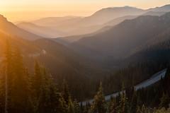 Road to the Ridge (Laura Jacobsen) Tags: hurricaneridge mountains olympicnationalpark sunrise washington