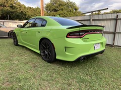 IMG_2614 (Smalltowntx87) Tags: 2019 dodge charger scat pack automotive dealership brand new car sublime green pearl 392 hemi 64 57 iphone xs max fiat chrysler 485hp srt