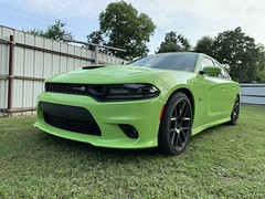 IMG_2612 (Smalltowntx87) Tags: 2019 dodge charger scat pack automotive dealership brand new car sublime green pearl 392 hemi 64 57 iphone xs max fiat chrysler 485hp srt