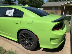 IMG_2556 (Smalltowntx87) Tags: 2019 dodge charger scat pack automotive dealership brand new car sublime green pearl 392 hemi 64 57 iphone xs max fiat chrysler 485hp srt