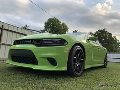 IMG_2620 (Smalltowntx87) Tags: 2019 dodge charger scat pack automotive dealership brand new car sublime green pearl 392 hemi 64 57 iphone xs max fiat chrysler 485hp srt