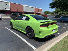IMG_2508 (Smalltowntx87) Tags: 2019 dodge charger scat pack automotive dealership brand new car sublime green pearl 392 hemi 64 57 iphone xs max fiat chrysler 485hp srt
