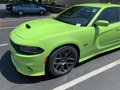 IMG_2507 (Smalltowntx87) Tags: 2019 dodge charger scat pack automotive dealership brand new car sublime green pearl 392 hemi 64 57 iphone xs max fiat chrysler 485hp srt