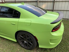 IMG_2618 (Smalltowntx87) Tags: 2019 dodge charger scat pack automotive dealership brand new car sublime green pearl 392 hemi 64 57 iphone xs max fiat chrysler 485hp srt