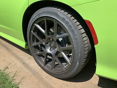 IMG_2555 (Smalltowntx87) Tags: 2019 dodge charger scat pack automotive dealership brand new car sublime green pearl 392 hemi 64 57 iphone xs max fiat chrysler 485hp srt