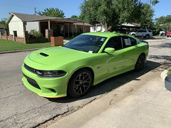 IMG_2521 (Smalltowntx87) Tags: 2019 dodge charger scat pack automotive dealership brand new car sublime green pearl 392 hemi 64 57 iphone xs max fiat chrysler 485hp srt
