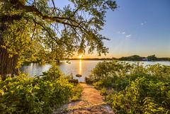 Sun setting over Gray's Bay (Mercenaryhawk) Tags: canon eos 5ds 5dsr 14mm rokinon sp water lake minnetonka minnesota mn grays bay dam park nature landscape hdr sun setting leaves spring trees leafy blue sky clear current