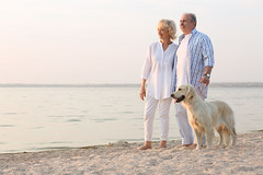 Senior couple and big dog on riverside (Dog Friendly Holidays) Tags: adorable age aged aging animal background beach beautiful big breed canine couple cute dog domestic female fur grandparent handsome happy holiday labrador lead looking male mammal man mature old outdoors owner pedigree pensioner people pet playing pretty purebred retirement retriever river riverside sand senior sunlight sunny sunrise sunset walking woman ukraine