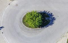 Dead-End Street (Aerial Photography) Tags: by la ndb 17052019 5sr60717 amschulfang asphalt baum bavaria bayern buchaerlbach deutschland einzelbaum farbe form fotoklausleidorfwwwleidorfde fotoklausleidorfwwwleidorfaerialcom germany grau grün landscapeandnature landschaft landschaftnatur laubbaum luftaufnahme luftbild niedererlbach oval p2 sackgasse strase strasenverkehr verkehr aerial color colour deciduoustree foliagetree green grey landscape landscapenature leaftree nature outdoor road roadtraffic shape singletree traffic tree verde buchaerlbachlkrlandshut bayernbavaria deutschlandgermany