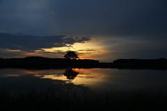 IMG_3307 (geraldtourniaire) Tags: sonnenaufgang 6d eos6d 24105l natur nature landschaft licht l ef franken mittelfranken