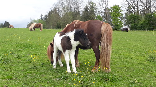 Linda und Baby