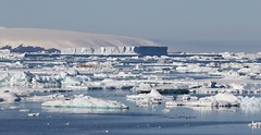 Sailing through the icebergs in the Weddell Sea with the Antarctic Peninsula behind (Paul Cottis) Tags: weddellsea antarctica antarcticpeninsula ocean ice icberg blue sky sea calm paulcottis 1 february 2019 feb