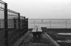 la nostalgie d'un rêve hivernal (l'imagerie poétique) Tags: 35mmfilm ilfordhp5 canoneos5 lensbabysweet50 nostalgia longing emptiness seaside normandie geometrie lines shadows scannednegative