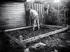 The Greenhouse (1) (Missy Jussy) Tags: trevorkerr trev man grafting greenhouseproject build fence shed trees sunlight ground mud drill tools mygarden garden gardens iphone mono monochrome blackwhite bw blackandwhite
