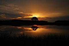 IMG_3332 (geraldtourniaire) Tags: canon natur nature 24105l 6d eos6d mittelfranken franken landschaft licht l sonnenaufgang