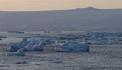 Icebergs in the evening light (Paul Cottis) Tags: weddellsea evening antarctica antarcticpeninsula ice iceberg ocean paulcottis 1 february 2019 feb sunset coast mountain