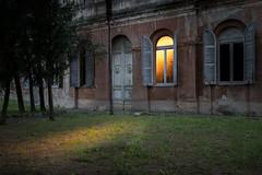 Sun from a window (FButzi) Tags: genova genoa liguria italy italia quarto ex light sun windows green building