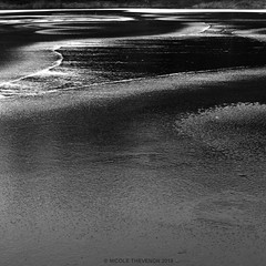 I like to fly (Nicole Thevenon) Tags: mood art nuit night eau abstract abstrait noiretblanc nature nocturnal nocturne bw blackandwhite