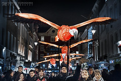 Flamingo Flyway (Michiyo Photo) Tags: flamingo flyway lumiere lighting winter england london festival night festive britain 2018 china town people event animal