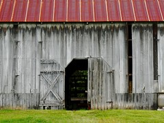 There's no need to lock the barn door When the cow is gone (krossbow) Tags: clagett farm csa community supported agriculture crops share chesapeake bay foundation cbf maryland prince george's county upper marlboro pgcounty dmv clagettfarm barn panasonic lumix tz90 zs70