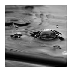 Matin pluvieux (Loïc Gouyette) Tags: noir et blanc bw wb pluie minimaliste rain