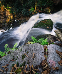 Off the Ledge (KRHphotos) Tags: elakalafalls stream westvirginia blurredwater landscape waterfall blackwaterfallsstatepark nature