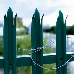 20190606-026-2.jpg (deeceei3) Tags: protection danger sharp border abstract wire background metal fence private doncaster barb green iron stop barbed steel horizontal barrier security