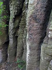 Basalt pillars (aniko e) Tags: basalt basaltpillars rocks volcanic hiking climbing spring outdoors szentgyörgyhegy kisapáti hungary balatonfelvidékinemzetipark balatonuplandsnationalpark balaton