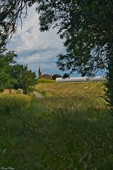 Le clocher de Mourède (Francis Fantoni) Tags: nikon d810 eglise church campagne countryside green vert grass herbe trees arbres clouds nuages ciel sky