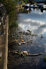 20190606-160.jpg (deeceei3) Tags: surface floating dangerous ecology contaminated canal pollution garbage dirty polluted dirt environment harmful environmental nasty outdoor toxic junk pollute water unhygienic rubbish plastic waste float problem dump bad trash ecological doncaster contamination bottle