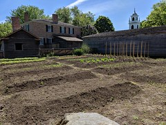 MVIMG_20190608_100712 (clefq) Tags: smpoole google pixel 2 htc mobile cell phone canada spring ontario upper village june 2019 garden