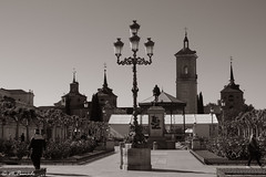 013814 - Alcalá de Henares (M.Peinado) Tags: farol escultura estatua monumento migueldecervantes cervantes plaza plazadecervantes alcaládehenares comunidaddemadrid españa spain 05052019 mayode2019 2019 canonpowershotsx60hs canon ccby monocromático blancoynegro byn blackandwhite bw