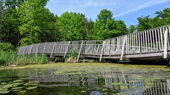 MVIMG_20190609_145258 (clefq) Tags: smpoole google pixel 2 htc mobile cell phone canada spring ontario collapsed bridge