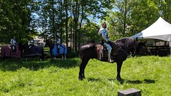 MVIMG_20190608_140444_1_2 (clefq) Tags: smpoole google pixel 2 htc mobile cell phone canada spring ontario upper village june 2019 medieval festival knights joust