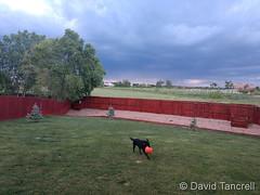 June 5, 2019 - Storm clouds on the horizon. (David Tancrell)