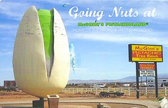 18 Mere50h (Rocky's Postcards) Tags: giant oversized pistachio sculpture roadsideattraction pistachioland mcginn alamogordo newmexico postcard mere5oh sign worldslargest