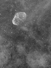 Crescent Nebula - Ha (Alejandro Pertuz) Tags: nebula crescent milkyway space cosmos universe astronomy astrophotography