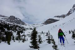 Observation sub peaks tour (*Andrea B) Tags: ski skiing skitouring skis observation sub peak subpeak observationsubpeak icefieldsparkway icefields spring spring2019 skitour tour backcountry april april2019 banffnationalpark